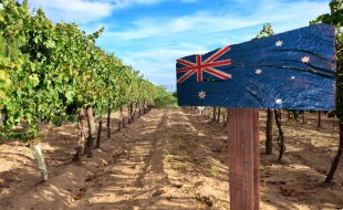The Margaret River Wine Region, Western Australia | Wines of Margaret River Australia | Terrior and History of the Margaret River