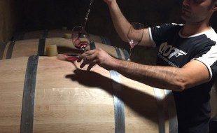 How Long to Age Barolo Wine? | SommelierQA.com
