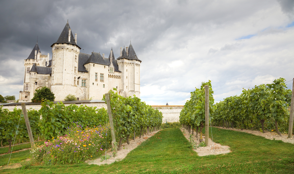 What are the wines of the Loire Valley? | Loire Valley Wine Region of France | SommelierQA.com