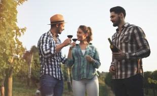 Little Known Wine Regions to Visit | SommelierQA.com | Best Up and Coming Wine Regions to Visit