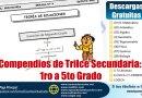 Compendios de Trilce Secundaria:  1ro a 5to grado