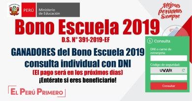 BONO ESCUELA 2019: Resultados Individuales por Institución Educativa, www.minedu.gob.pe