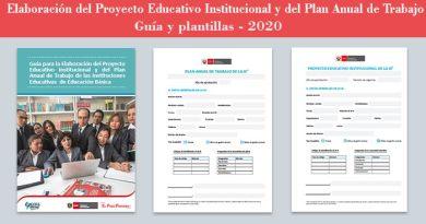 Guía para elaborar el PEI y PAT en las Instituciones Educativas 2020, [Descargar Gratis]