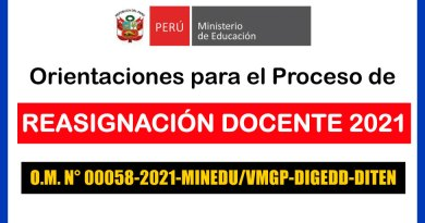 REASIGNACIÓN DOCENTE 2021: Orientaciones para el proceso de reasignación docentes por interés personal y unidad familiar [O.M. N°00058-2021-MINEDU-VMGP-DIGEDD-DITEN]