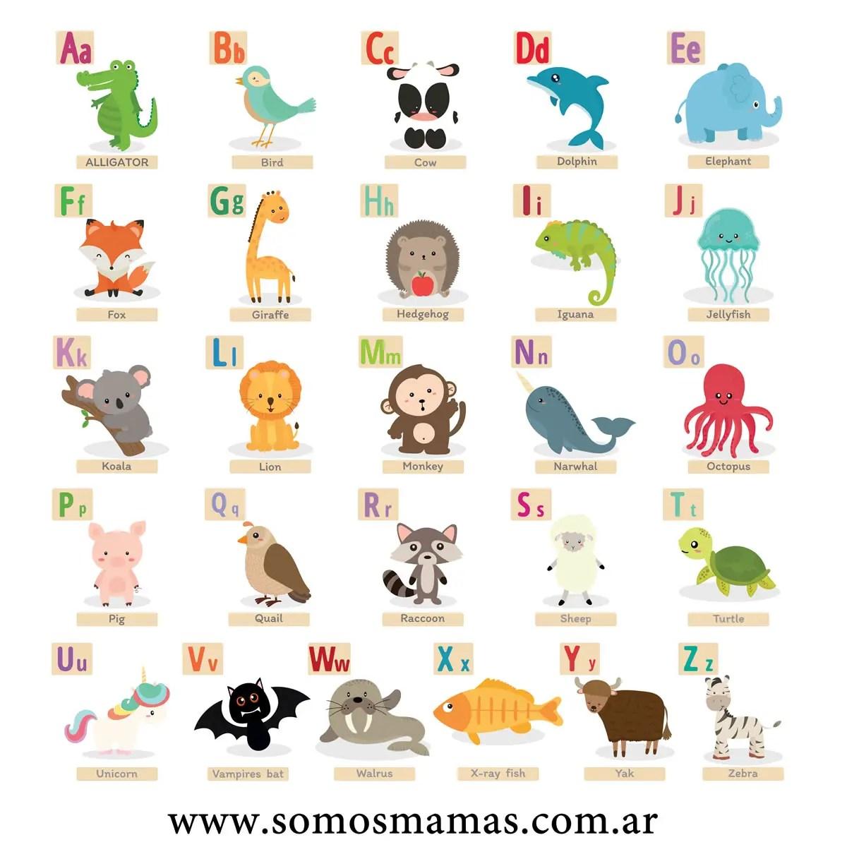Animales En Ingles Lista De 150 Nombres De Animales En