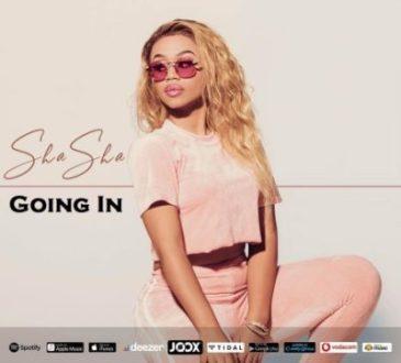 Sha Sha ft. DJ Maphorisa & Kabza De Small - Going In