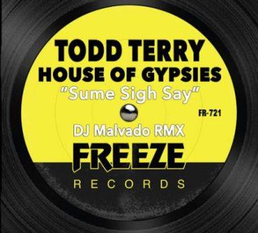 Todd Terry ft House Of Gypsies - Sume Sigh Say (Dj Malvado RMX)