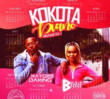 Kaygee DaKing & Bizizi - Kokota Piano (Amapiano Vol. 1)