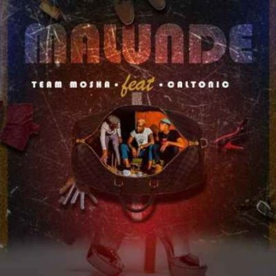 Team Mosha - Malunde (feat. Caltonic SA)