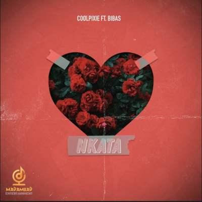CoolPixie - Nkata (feat. Bibas)