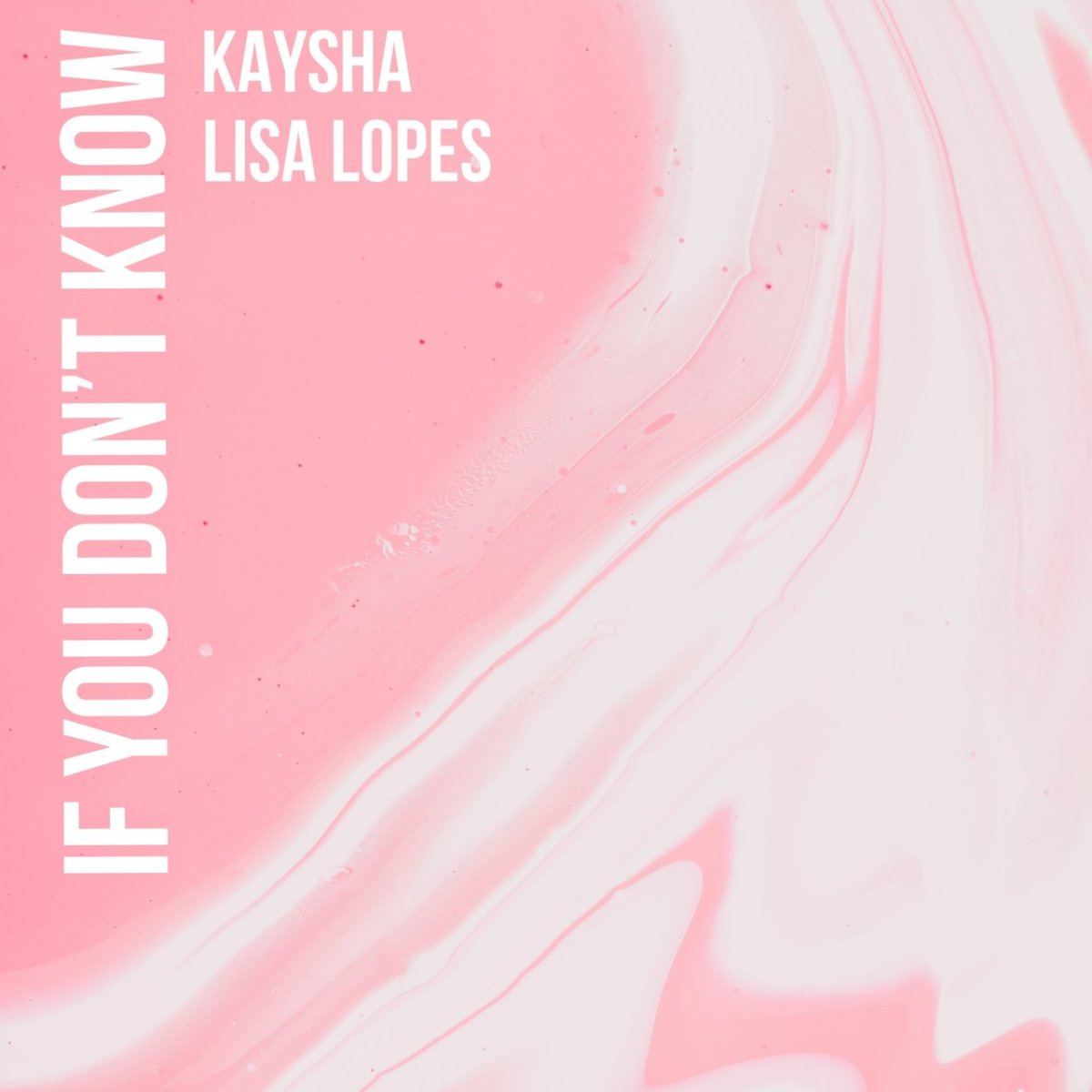 Kaysha - If You Don't Know (ft. Lisa Lopes) (Cover)