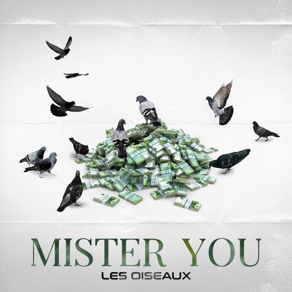 Mister You - Les Oiseaux (Cover)