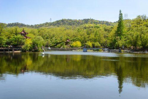 dalian-botanical-park