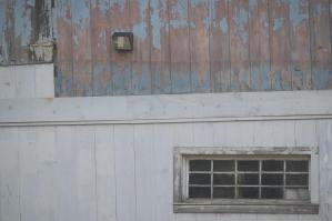 Old windows blue paint peeling afternoon light tea drifting aroundhellip