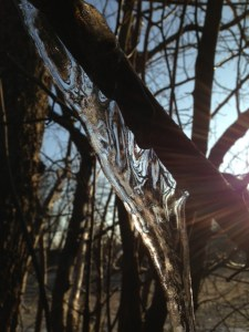 icicle-and-sun.jpg