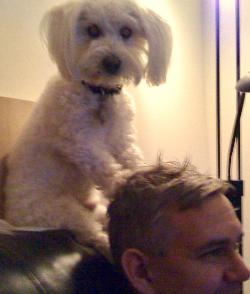 Milo used to be a hairdresser!