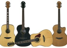 B.C. Rich Acoustic Guitars