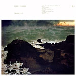'Crack-Up' by Fleet Foxes (Album)