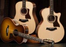 Taylor Guitars 700 Series