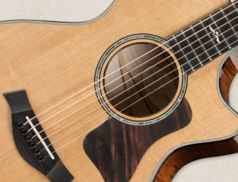 Taylor Guitars continues its maple musical revival