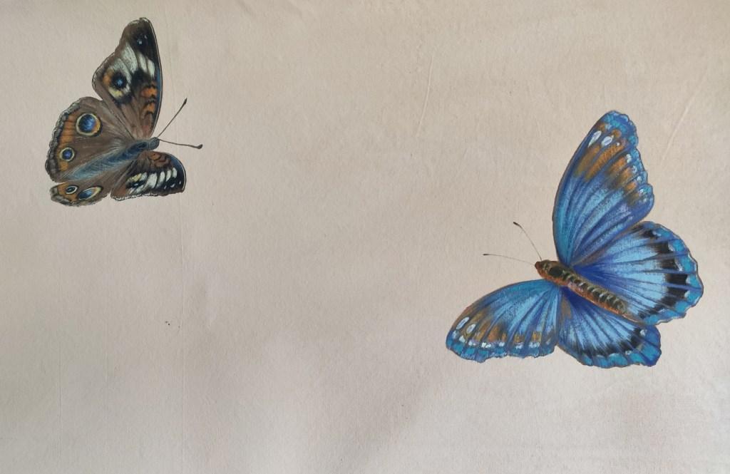 farfalle dipinte ad acrilico