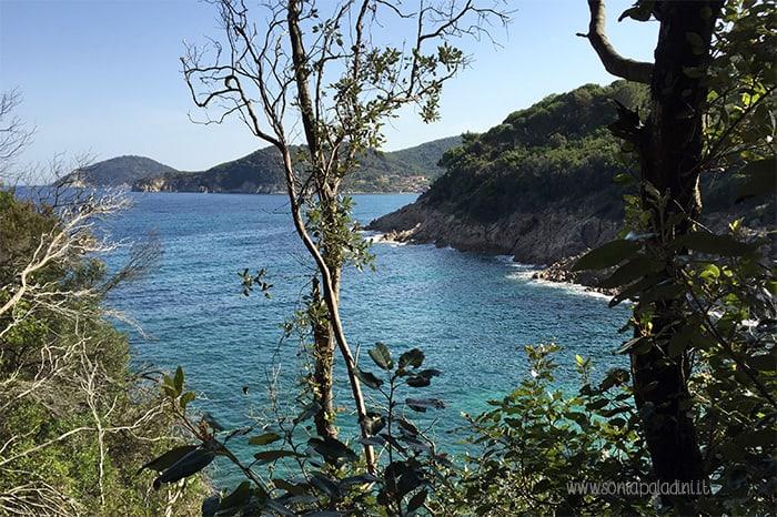 Isola_d'Elba_scorcio