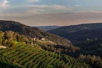 La valle del vino prosecco