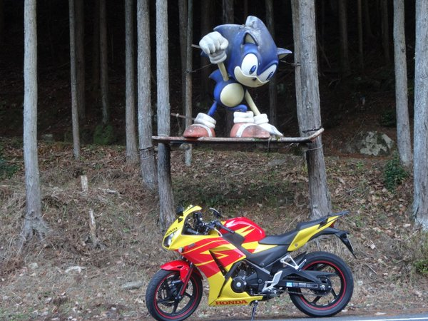 Giant Sonic Statue Found In The Woods of Japan! - The Sonic Stadium