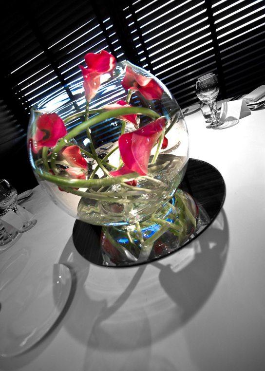 Callas in a fishbowl at Aviator