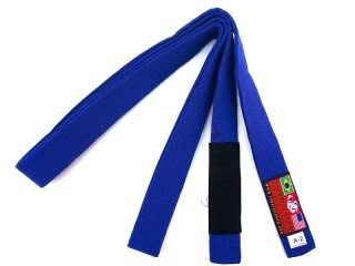 BJJ Blue Belt Ground Game by J.B. Will – Notes