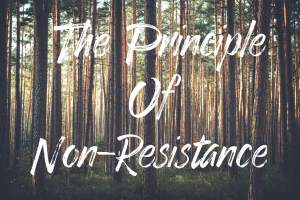 The Principle Of Non-Resistance
