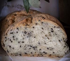 pane senza impasto semi di papavero