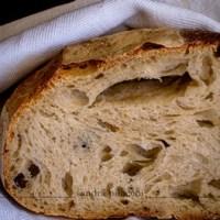 Pane farina tipo 1, senza impasto e lievitazione a bassa temperatura - con video delle fasi di lavorazione