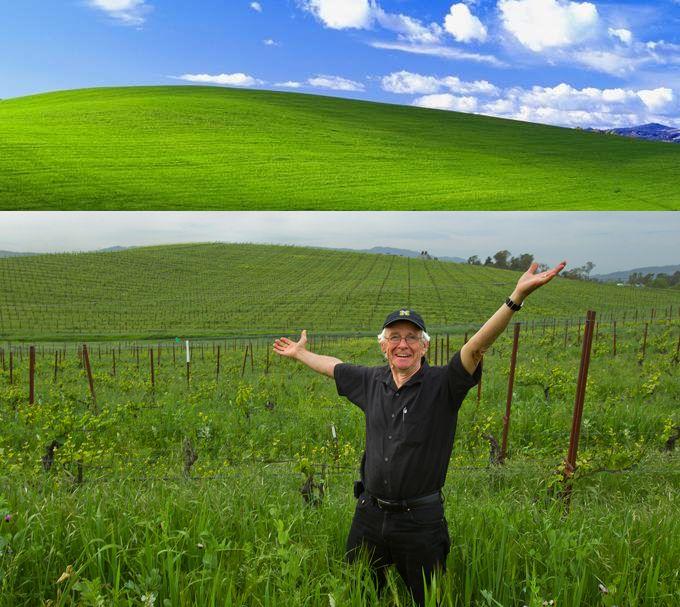 """""""Безмятежность"""" - самый известный холм на рабочем столе, нашли на картах Гугл. Обои Windows XP, как одно фото обогатило хозяина Лучшие обои Windows XP. История появления фотографии """"Безмятежность"""" (Bliss) и насколько разбогател ее автор. Показываем, как найти холм """"Безмятежность"""" на картах Гугл."""