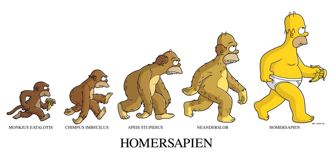 """THE SIMPSONS: Flanders calls Homer an ape and makes a case for evolution revolution in THE SIMPSONS episode """"The Monkey Suit"""" airing Sunday, May 14 (8:00-8:30 PM ET/PT) on FOX. THE SIMPSONSª & ©2006TCFFC ALL RIGHTS RESERVED. ©2006FOX BROADCASTING CR:FOX"""
