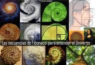 patronesdeluniverso-fibonacci