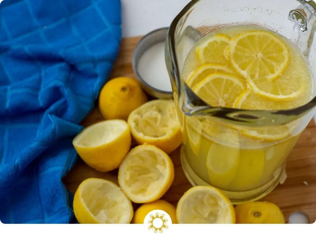 Easy Peasy Lemon Squeezy Lemonade