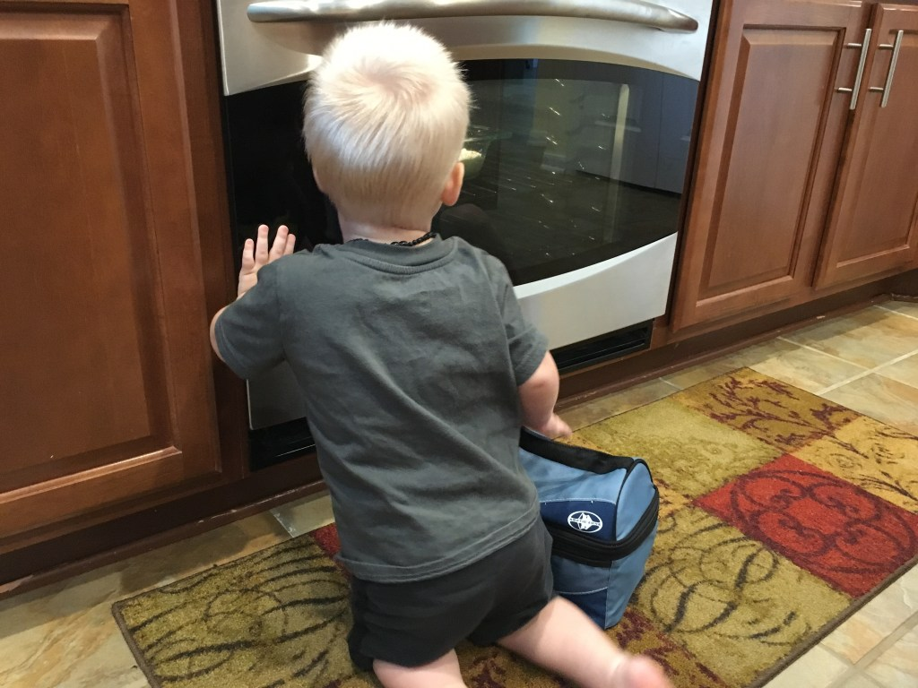 Little boy kneeling in front of the oven watching Hot Virginia Bake in the oven