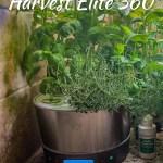 AeroGarden Harvest Elite 360 Review + Tips