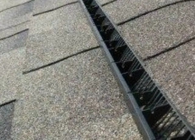 9 Warning Signs Of Roof Leaks