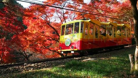 MT Takao Autumn leaves Mt Takao cable car