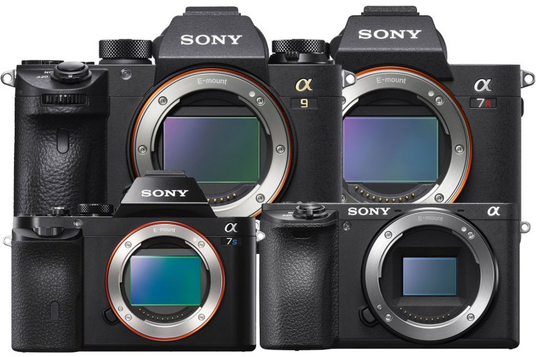 sony mirrorless camera guide