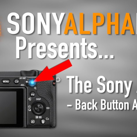 Sony A6600 Tutorial - Back Button Focus