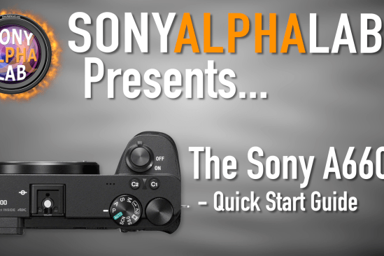 Sony A6600 - Quick Start Guide for Beginners - Skip the Manual...