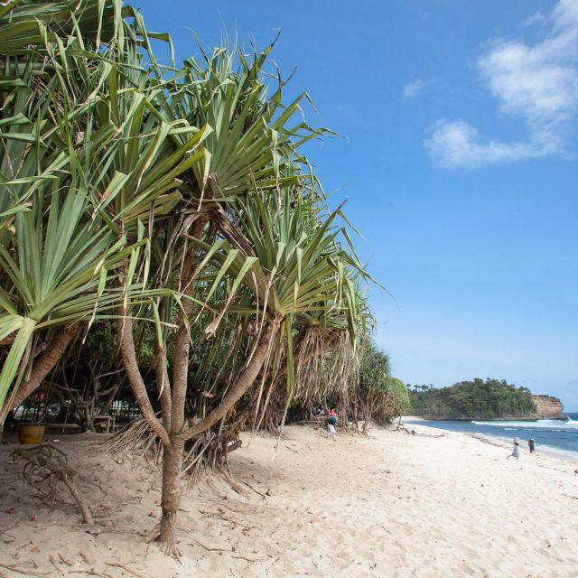 Jasa Foto Wisata Malang (Pantai Ngudel)