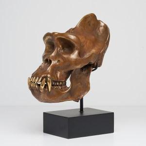 Bronze Gorilla Skull Sooka Interior signed by Jake Richmond