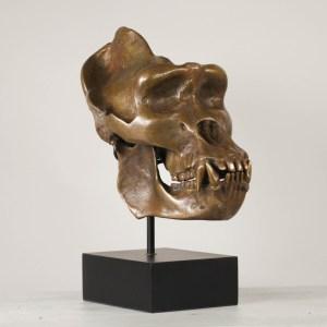 Bronze Gorilla Skull Edition II