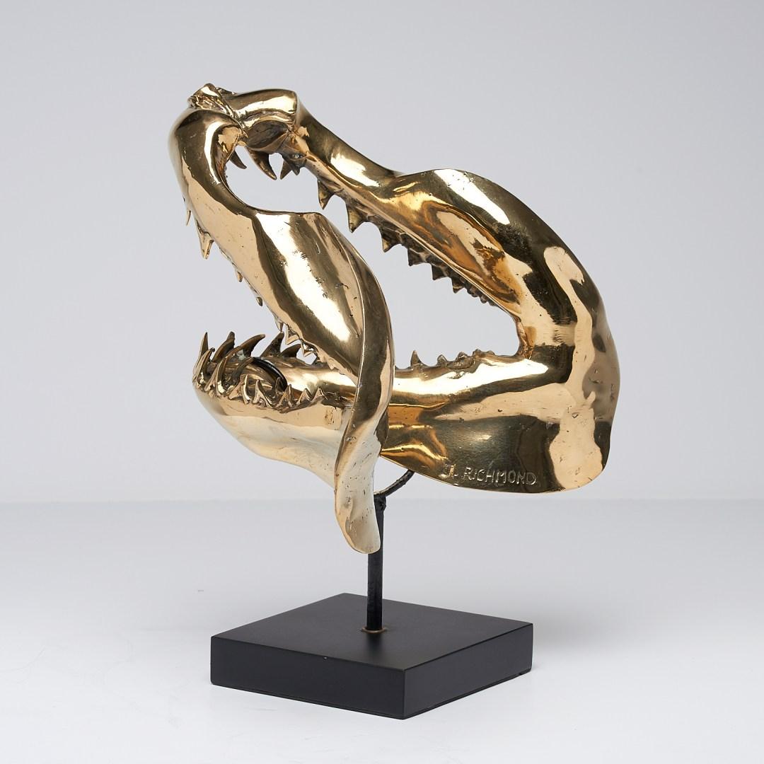 Bronze Mako Shark Sooka Interior