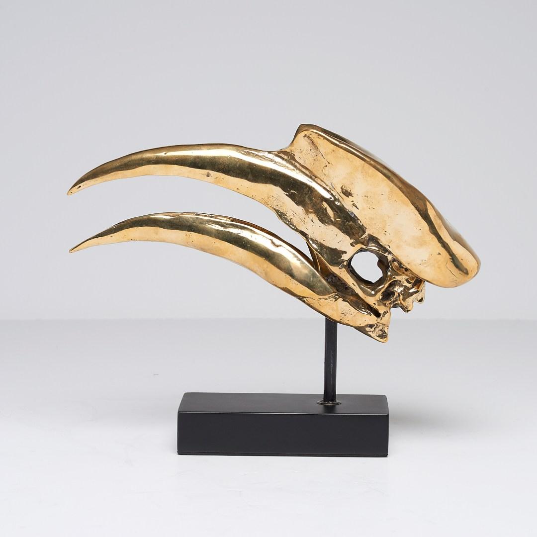 Great Hornbill Skull Sooka Interior