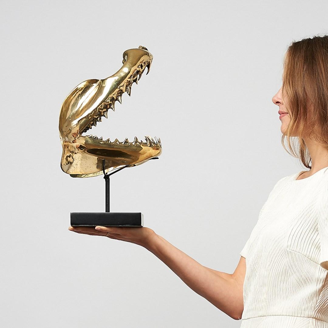 polished bronze mako shark jaw